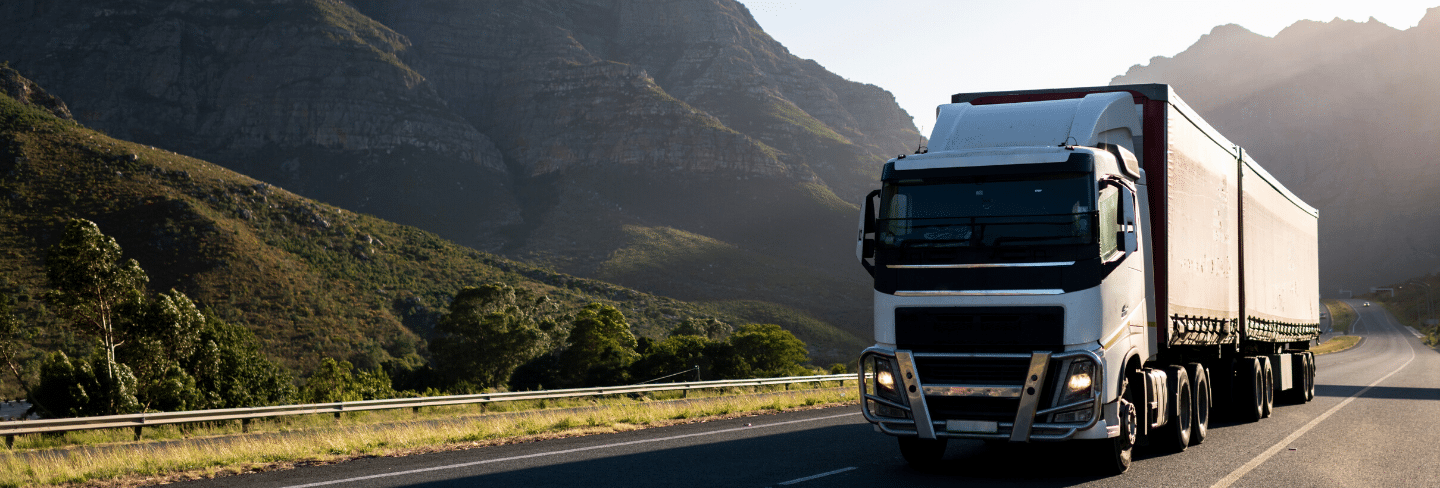 Online Transport and Logistics